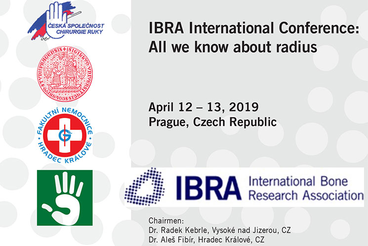 IBRA International Conference: All we know about radius